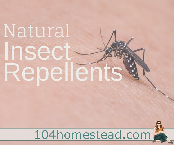 "A list of natural repellents that work on a wide array of insects in a variety of situations. Also included are great natural ""after bite"" solutions."