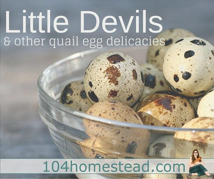 Little Devils & Other Quail Egg Delicacies