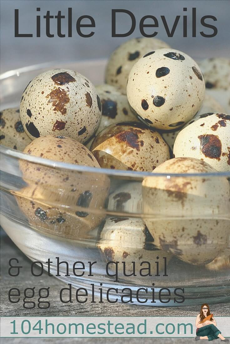 "Discover how to make ""Little Devil"" deviled quail eggs as well as other recipes made just for these tiny eggs. The rich flavors will have you begging for more."