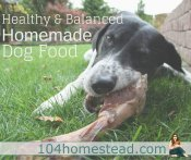 Healthy and Balanced Homemade Dog Food