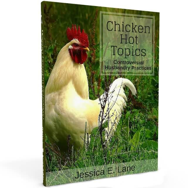 Chicken Hot Topics discusses some of the backyard chicken owner's most controversial subjects and it lays out the facts so you can decide what is right for you and your flock.