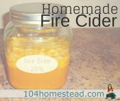 Homemade Fire Cider for Cold & Flu Season