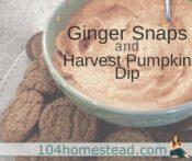 Ginger Snaps & Harvest Pumpkin Dip