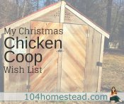A New Chicken Coop: What to Ask Santa For