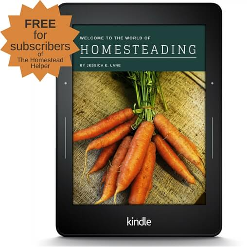 Subscribe and get a free copy the 104 homestead for Free homestead