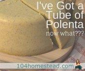Polenta: A Gluten-Free Alternative to Grains