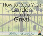 How to Keep Your Garden Looking Great