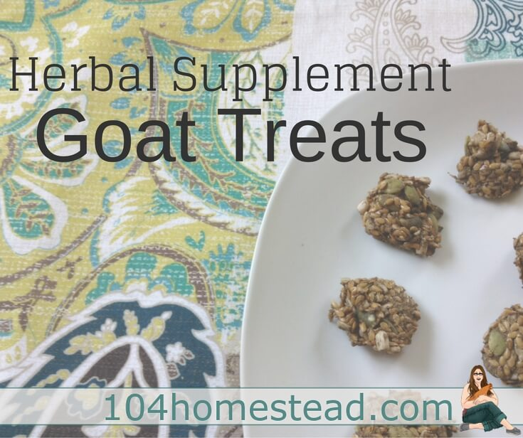 The herbal powders I give my goats sift through the feed and end up uneaten at the bottom of the dishes. That's why I started making herbal goat treats.