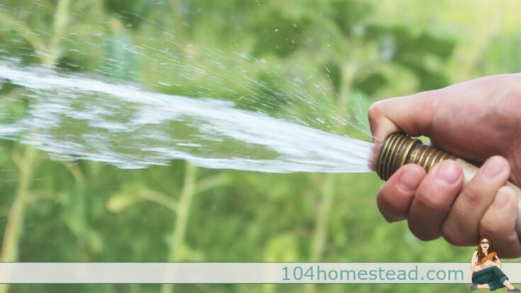 Water conservation has a great number of benefits. The homestead is ripe for opportunities to save water. Here are a just a few to get you started!