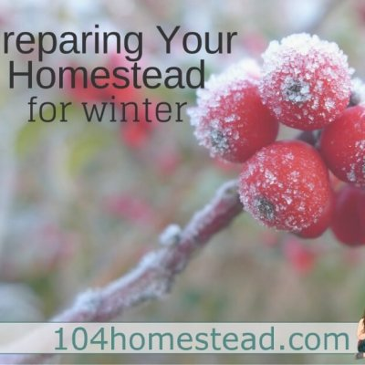 How to Prepare for Winter on a Homestead