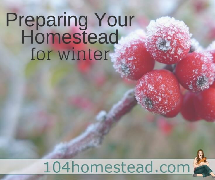 While everyone has their own list of fall chores, homesteaders in particular have an insane amount to get done before winter arrives.