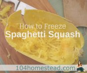 Can You Freeze Spaghetti Squash? Yes! Here's How