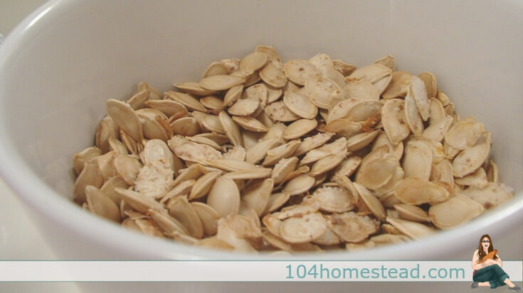 If seed saving isn't your thing, you can roast spaghetti squash seeds just like pumpkin seeds. They're delicious!