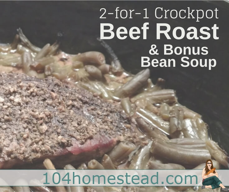 When your beef roast is done, leave the broth in the crockpot as well as some of the green beans and we are going to make Bean Soup!