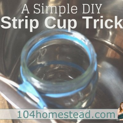 A Simple DIY Strip Cup Trick for Milking