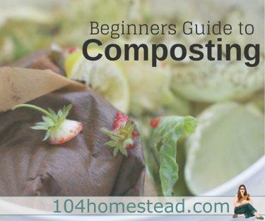 Regardless of whether you garden indoors or out, you should be composting. It can seem overwhelming, but I;m going to simplify the process for you.