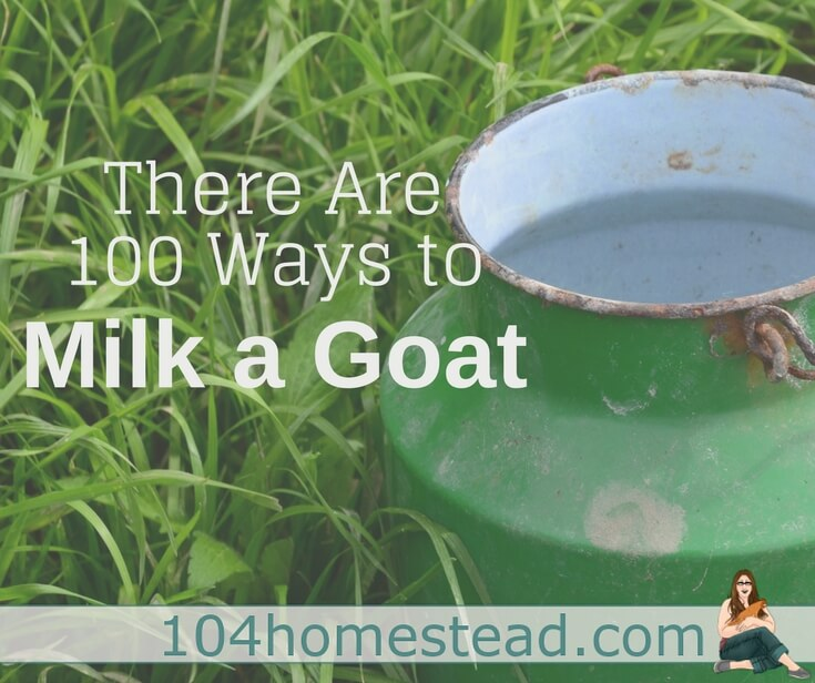It's not easy, but I'm here to tell you, it's not hard either. You just have to figure out which of the 100s of ways to milk a goat works best for you.