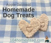 Apple Oatmeal Homemade Dog Treats