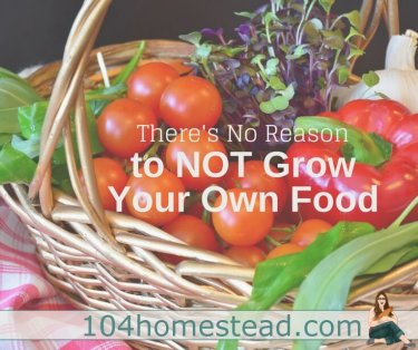 Homesteaders are growing food, cooking with it, and preserving it. You may think you don't have the space or time, but I assure you, you can do it.