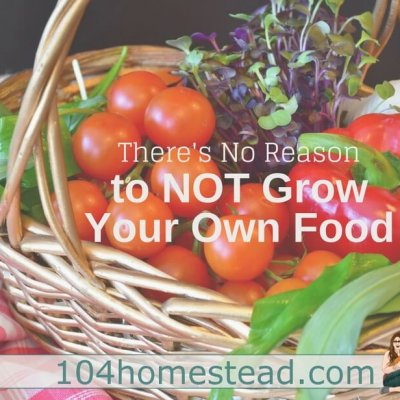 There's No Reason to NOT be Growing Food