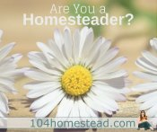 Homegrown & Handmade: Are you a homesteader?