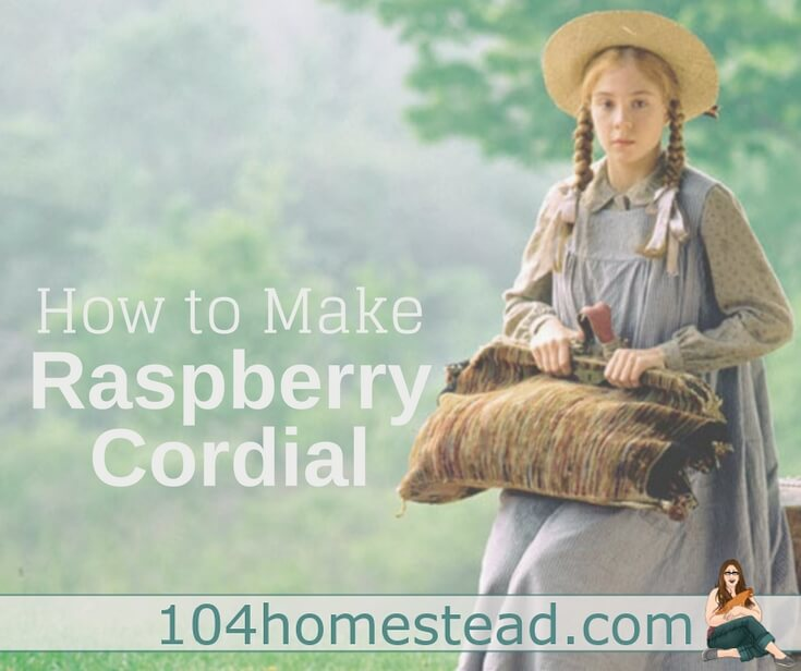 Make traditional raspberry cordial inspired by the Anne of Green Gables book series. This easy recipe is sure to delight your house guests.