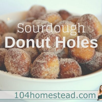Cinnamon Sugar Sourdough Donut Holes Recipe