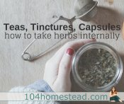 Herbal Tea, Tincture, or Capsule? How to Take Your Herbs