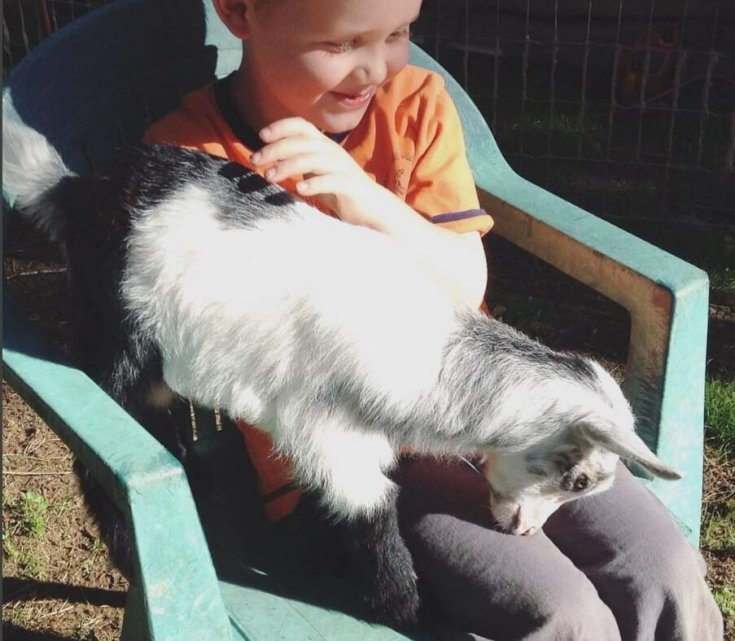 My youngest son snuggling with one of our Nigerian Dwarf bucklings in a green plastic chair in the backyard.