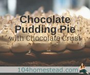 Chocolate Pudding Pie with Chocolate Crust