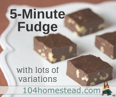 Homemade fudge is a holiday staple. A good fudge melts in your mouth. The best fudge melts in your mouth and can be whipped up in five minutes or less.