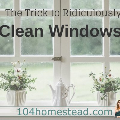 Window Washing: The Trick to Ridiculously Clean Windows