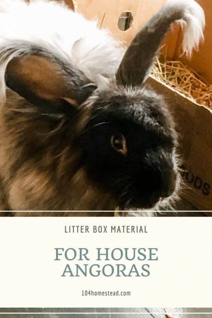 Litter box material for angoras needs to accomplish a few things. It needs to be super absorbent. It needs to be safe and not cause impaction. It needs to stay out of the fiber (which is the biggest obstacle). And if it can be composted, well that's just gravy.