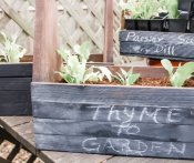 Do-it-Yourself Chalkboard Planter {An Easy Weekend Craft}