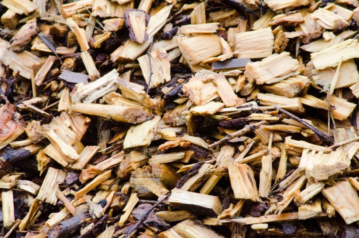 A smattering of wood chips in various sizes and shapes.
