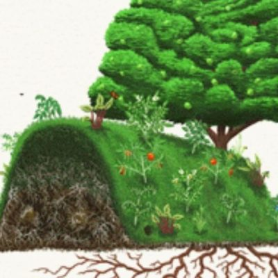 Hugelkultur: Permaculture Raised Beds